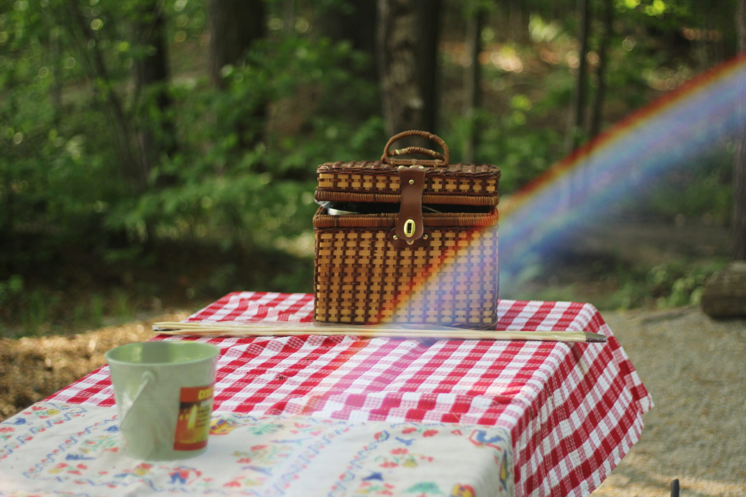 pic nic in Riviera